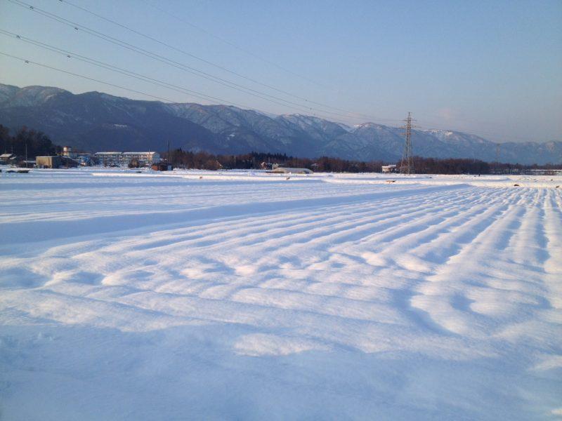 冬の田舎風景