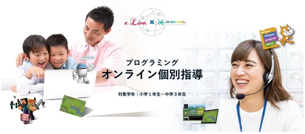 オンラインでプログラミング指導